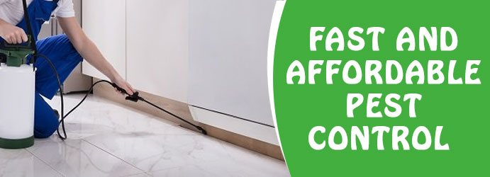 Pest Control Services Flinders View