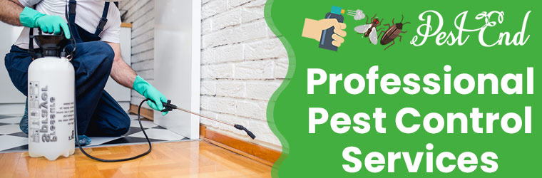 Professional Pest Control Services National Park